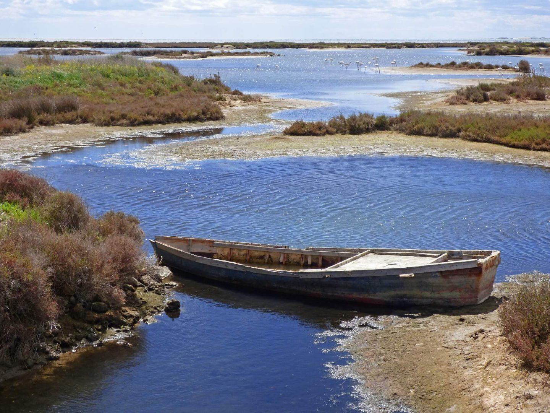 Delta del río Ebro, Cataluña, España
